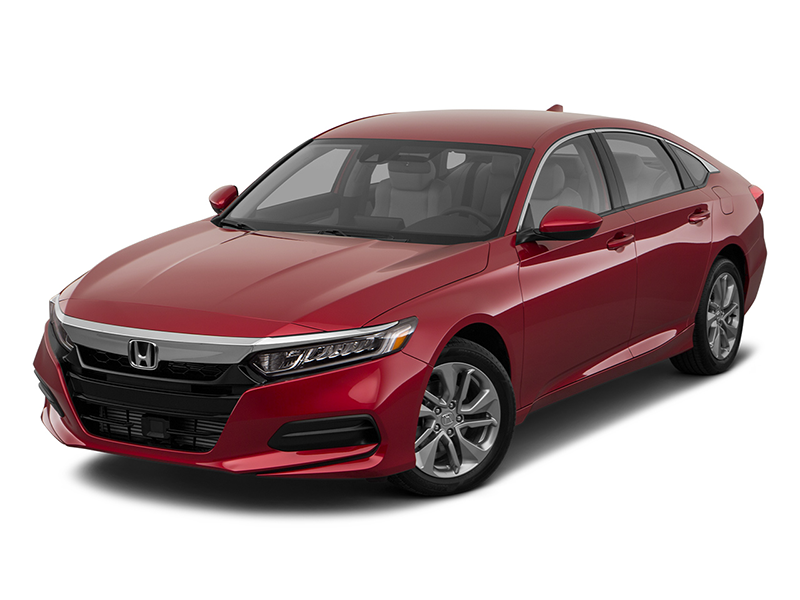 2019 Honda Accord in Greenville, NC