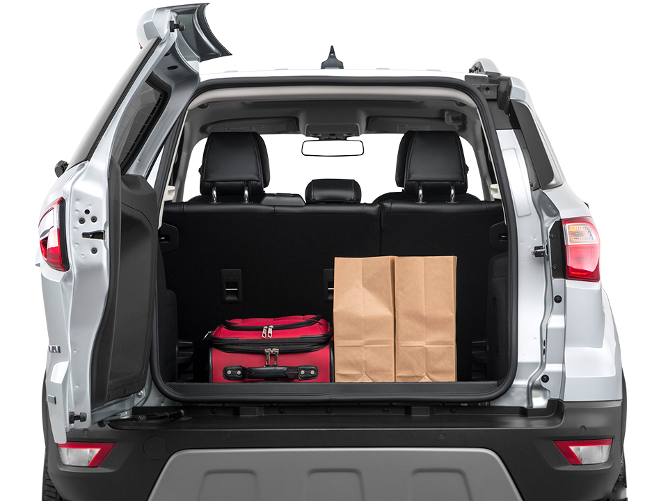 2020 Ford Ecosport Cargo Space in Greenville, TN