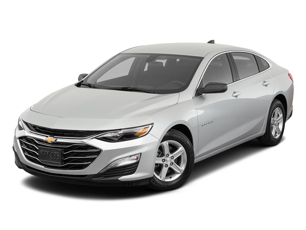 2020 Chevrolet Malibu in Sulphur Springs, TX