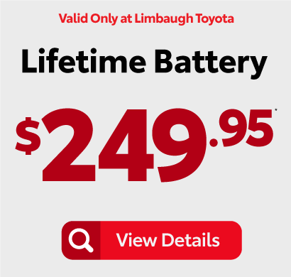 Lifetime Battery $249.95 - View Details