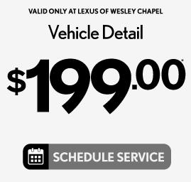 Vehicle Detail $199 - Schedule Service
