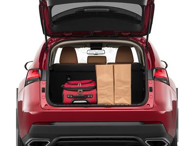 2019 Lexus NX Trunk Space