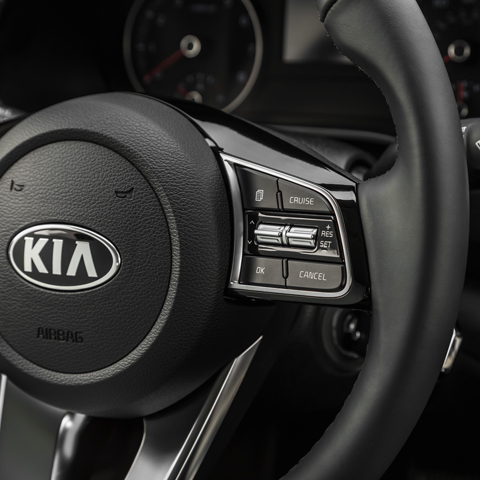 2019 Kia Forte Available Safety Features